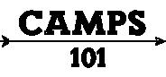 logo-camps101-2a